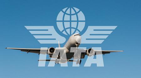 L'Association internationale du transport aérien (IATA)
