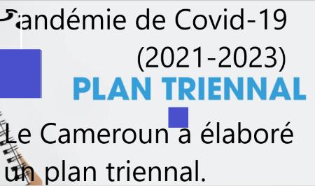 Le Cameroun veut remettre son économie, fortement affectée par la crise de covid-19