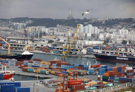 Vue générale du terminal portuaire d'Alger - PHOTO/REUTERS