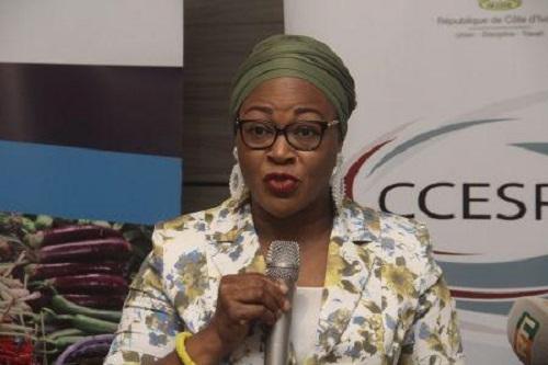 Mariam Fofana Fadiga, Secrétaire exécutive du CCESP