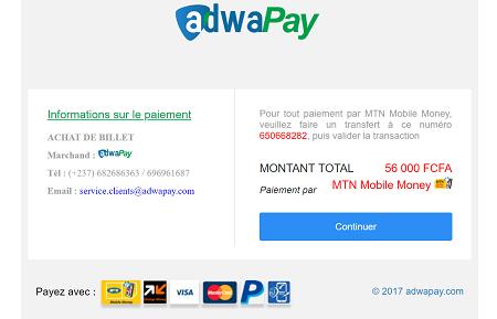AdwaPay, application a la particularité d'agréger la plupart des moyens de paiements dématérialisés utilisés au Cameroun