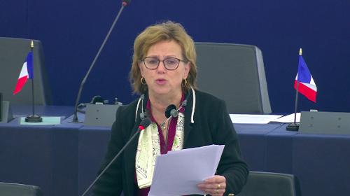 Dominique Bilde s'adressait au Parlement européen pour rendre un vibrant hommage aux forces de sécurité camerounaise engagées au front contre les ennemis du Cameroun