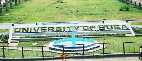 L'Université de Buea, (UB) compte sept facultés: Faculté de génie, Faculté des arts, Faculté d'éducation, Faculté des sciences de la santé, Faculté des sciences, Faculté des sciences sociales et de gestion, Faculté d'agriculture et de médecine vétérinaire.