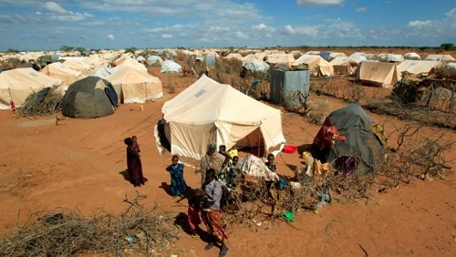 Le camp de réfugiés de Dadaab, près de la frontière somalienne, abritant, à ce jour, plus de 200 000 personnes. © REUTERS/Thomas Mukoya